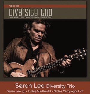 Søren Lee Diversity Trio